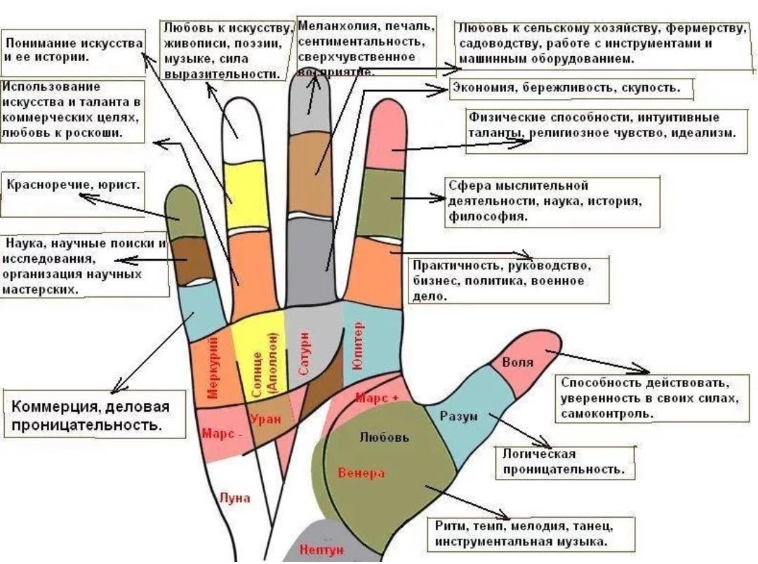 Хиромантия рука