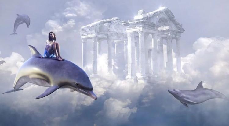 Сон про дельфинов