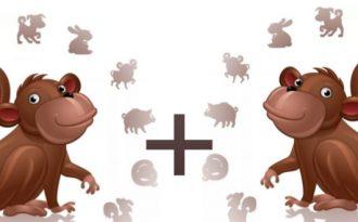 Обезьяна-обезьяна совместимость