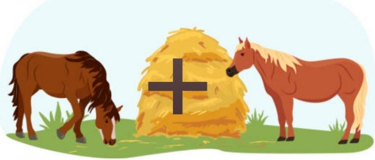 Лошадь-лошадь совместимость