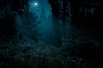 Улететь в сновидении на Луну